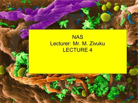 NAS Lecturer: Mr. M. Zivuku LECTURE 4 1 Objectives By the end of this unit, you should be able to ; Explain the cultivation of bacteria in terms of in.