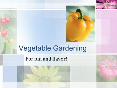 Vegetable Gardening For fun and flavor! Site Selection Where? Water Rotation.