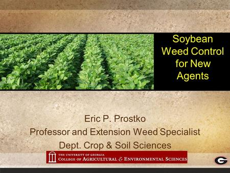 Soybean Weed Control for New Agents Eric P. Prostko Professor and Extension Weed Specialist Dept. Crop & Soil Sciences.