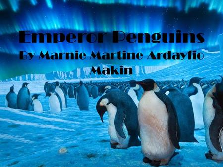 Emperor Penguins By Marnie Martine Ardayfio Makin.