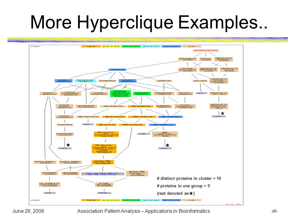 June 28, 2006 Association Pattern Analysis – Applications in Bioinformatics 20 More Hyperclique Examples..