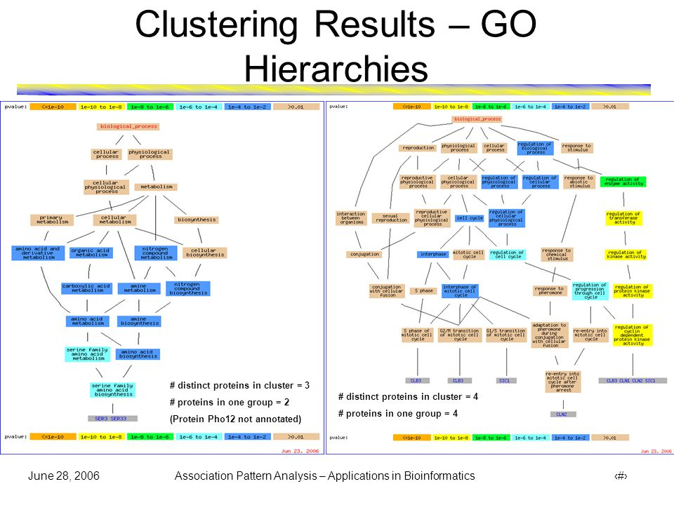 June 28, 2006 Association Pattern Analysis – Applications in Bioinformatics 25 Clustering Results – GO Hierarchies # distinct proteins in cluster = 8 # proteins in one group = 8 # distinct proteins in cluster = 7 # proteins in one group = 6 (rest denoted by )