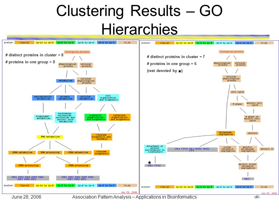 June 28, 2006 Association Pattern Analysis – Applications in Bioinformatics 26 Clustering Results – GO Hierarchies # distinct proteins in cluster = 5 # proteins in one group = 5 # distinct proteins in cluster = 2 # proteins in one group = 2