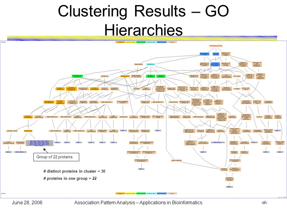 June 28, 2006 Association Pattern Analysis – Applications in Bioinformatics 31 Clustering Results – GO Hierarchies # distinct proteins in cluster = 7 # proteins in one group = 4 (Rest of the 3 proteins are marked as )