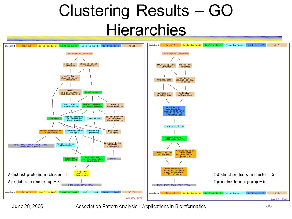 June 28, 2006 Association Pattern Analysis – Applications in Bioinformatics 33 Clustering Results – GO Hierarchies # distinct proteins in cluster = 8 # proteins in one group = 6 (rest denoted by )  Protein AAP1 and VAM6 (denoted by ) got clustered together with proteins involved in biological process of membrane fusion