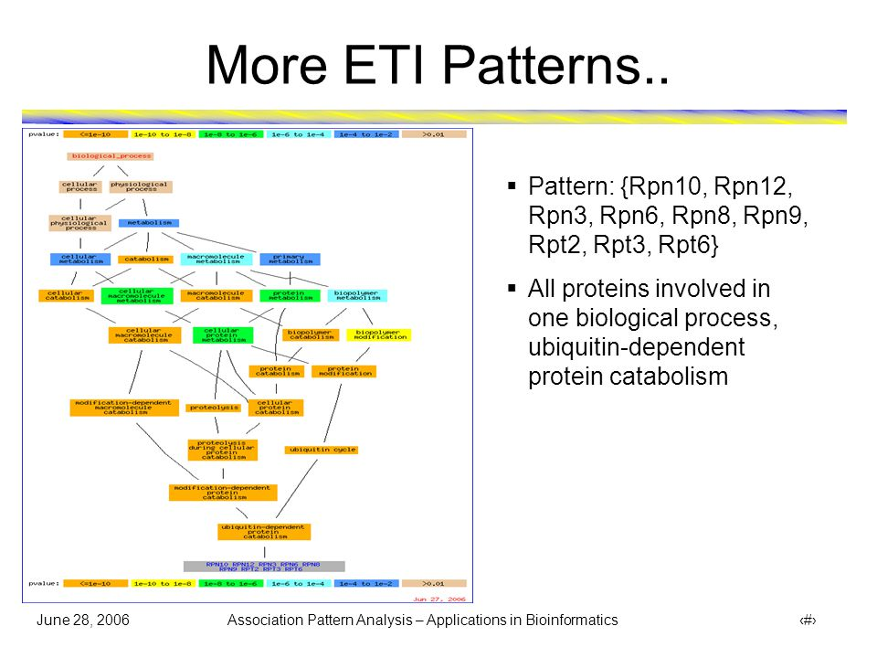 June 28, 2006 Association Pattern Analysis – Applications in Bioinformatics 41 Concluding Remarks  Hyperclique and ETI patterns show great promise for identifying protein modules and for annotating uncharacterized proteins  Clustering does not perform as well as hypercliques and ETI due to a variety of reasons: Each protein gets assigned to some cluster even if there is no right cluster for it Modules can be overlapping Modules can of different sizes Data is high-dimensional