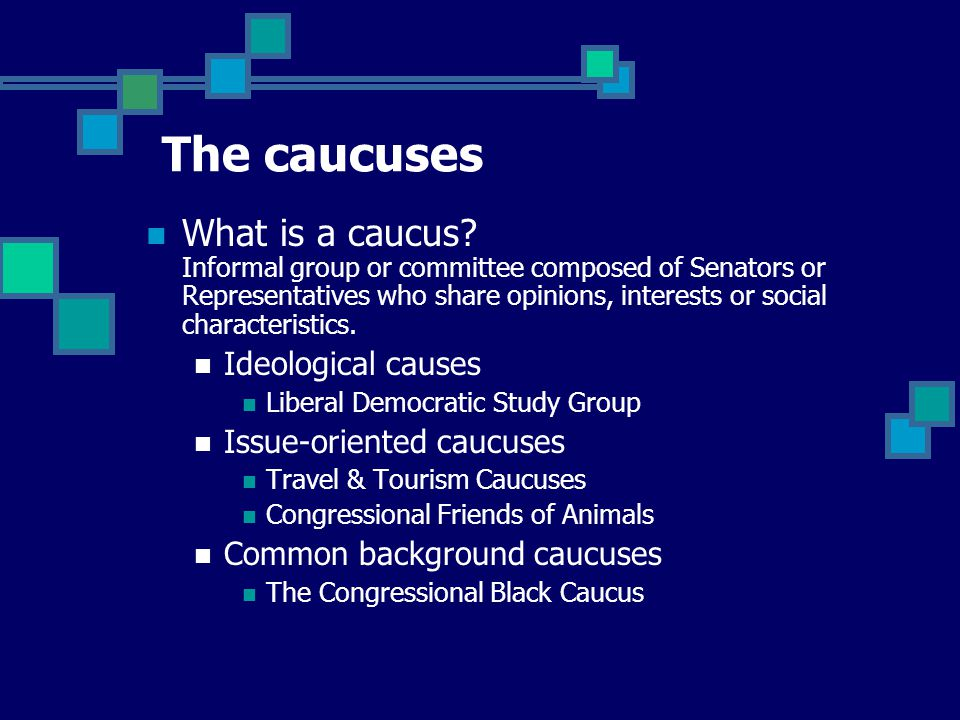 What is a caucus.