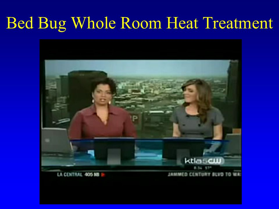 Effect of High Temperatures on Bed Bugs Expose bed bugs to high temperatures in a water bath –2 bugs per tube –Temperatures of 103- 120F –Exposures of 0.5-240 min Record bed bug mortality –1 min later –24 h later