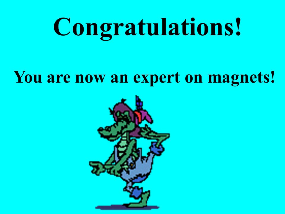 You are now an expert on magnets! Congratulations!