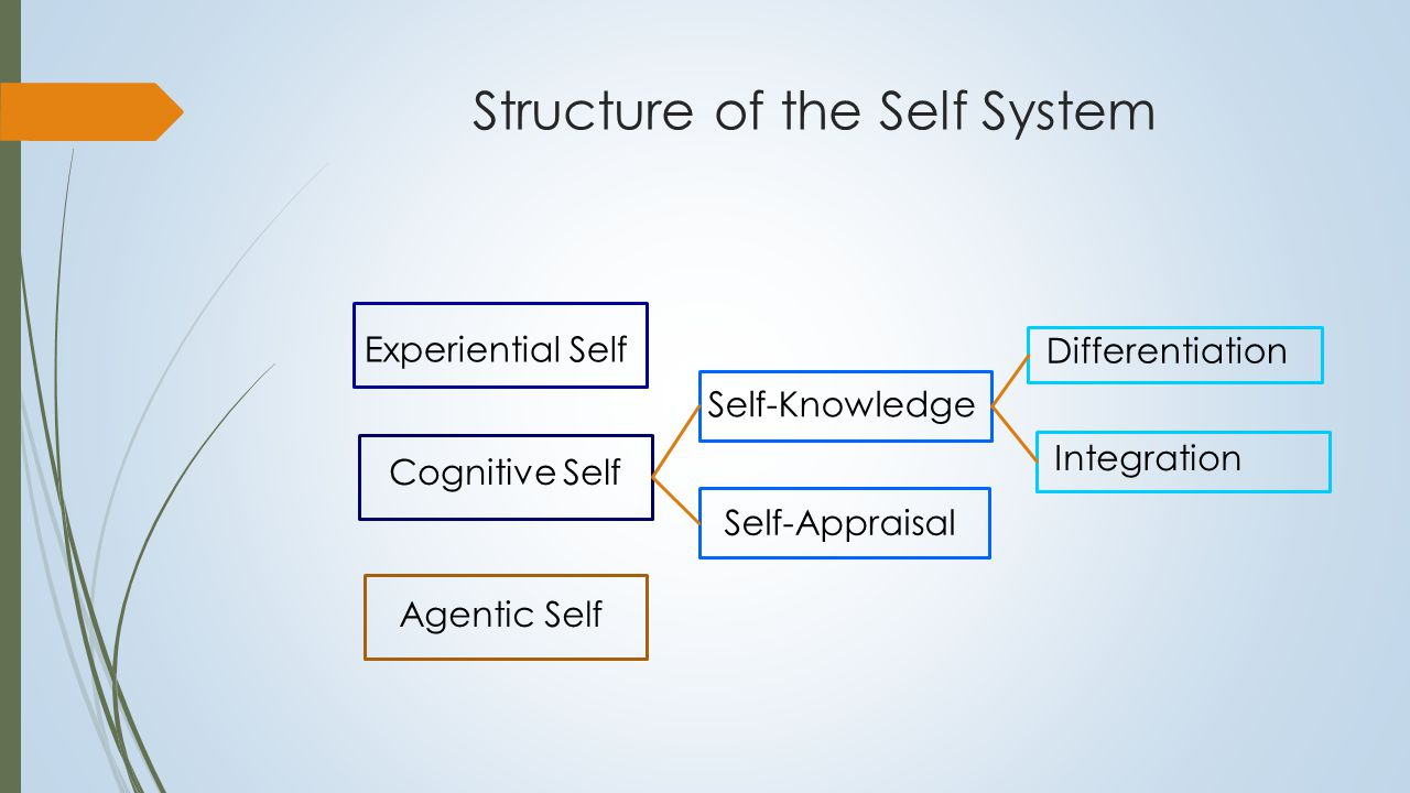 Structure of the Self System Experiential Self Cognitive Self Agentic Self Self-Knowledge Self-Appraisal Differentiation Integration Self- Reflective Thought Processes Borderline personality involves Impairments in all components of the self