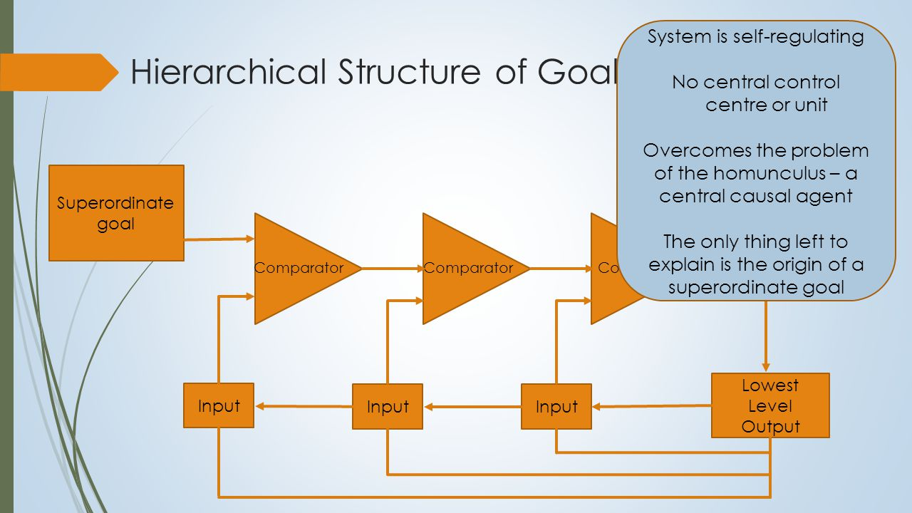 Hierarchical Structure of Goals Superordinate goal Comparator Lowest Level Output Input System is self-regulating No central control centre or unit Overcomes the problem of the homunculus – a central causal agent The only thing left to explain is the origin of a superordinate goal Most goals are not established using a self-reflective process Most goals established through an implicit process Emotional aspect of this process motivates for action