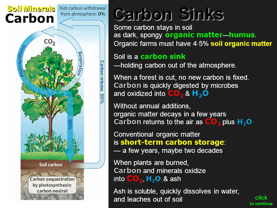 How can we store carbon long-term.For centuries. For millennia.