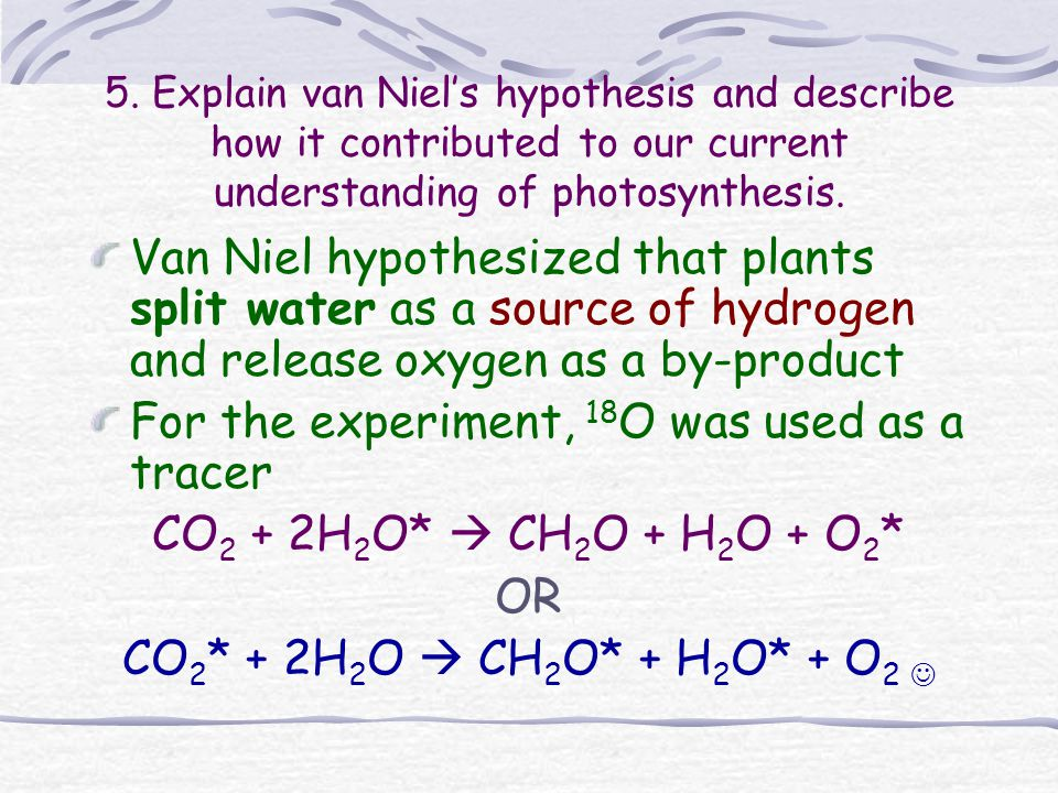 6.Explain the role of redox reactions in photosynthesis.
