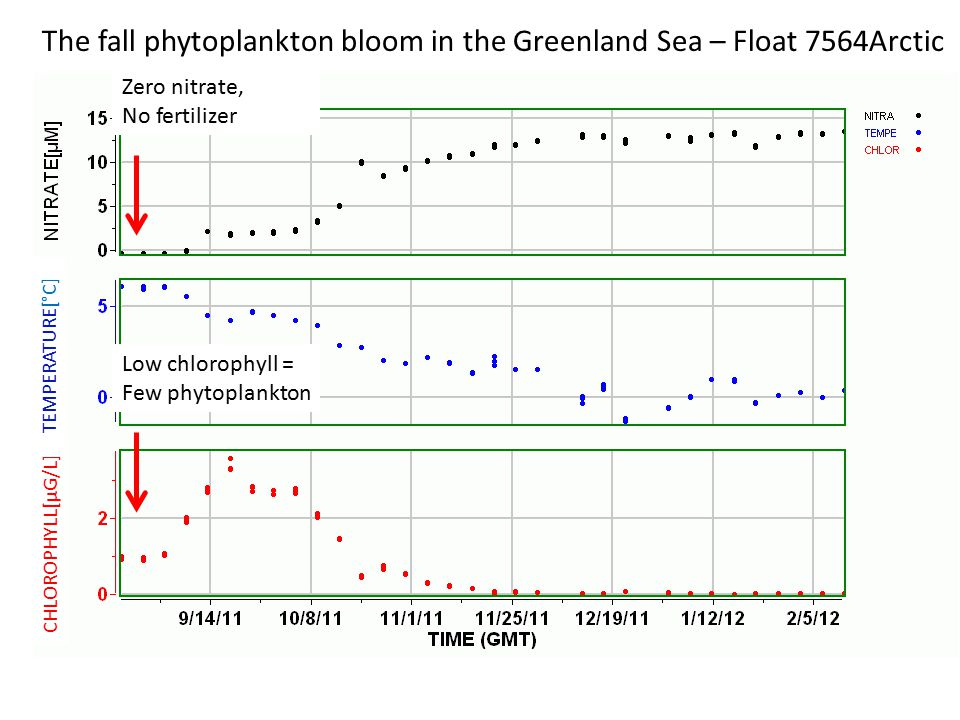 CHLOROPHYLL[µG/L] TEMPERATURE[°C] The fall phytoplankton bloom in the Greenland Sea – Float 7564Arctic Nitrate injected Storm mixes water column, bringing up cold, NO 3 - rich water Phytoplankton bloom forms