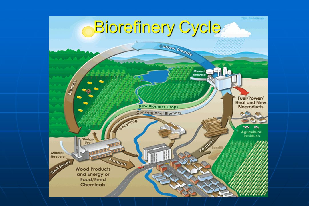 The Proposed Integrated Biomass-Production Conversion Site (IBPCS) or Biorefinery Concept