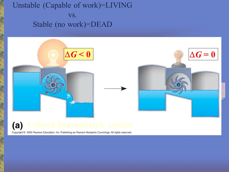 LE 8-6a Reactants Energy Products Progress of the reaction Amount of energy released (  G < 0) Final-initial E Free energy Exergonic reaction: energy released Catabolism if G is negative, e.g.