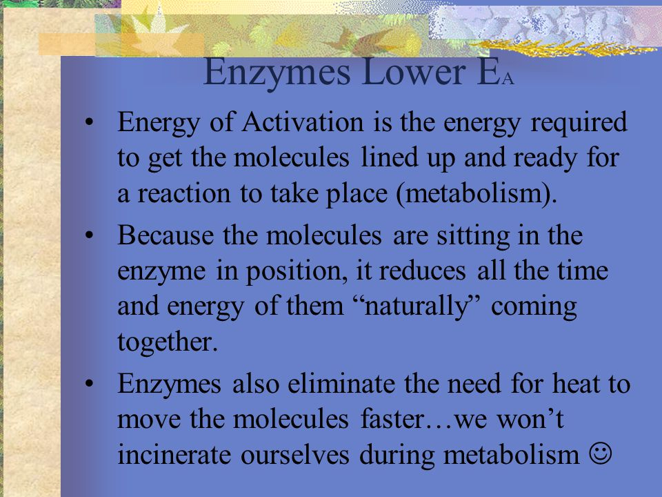 . Course of reaction without enzyme E A without enzyme  G is unaffected by enzyme Progress of the reaction Free energy E A with enzyme is lower Course of reaction with enzyme Reactants Products