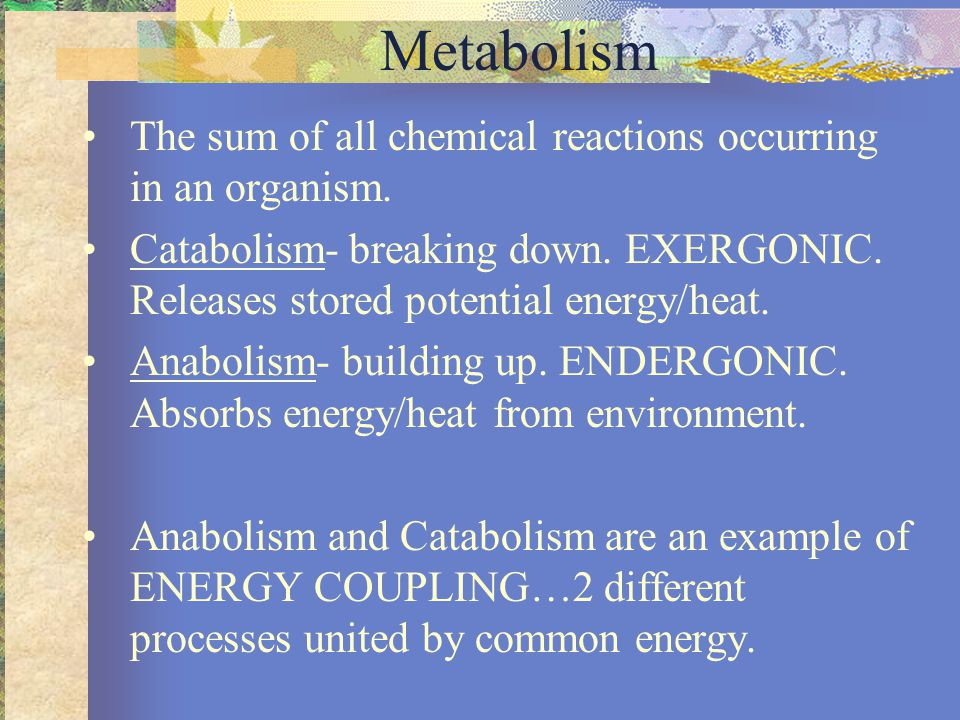 Energy (E) Kinetic- energy of movement, usually e- or protons in Biology.