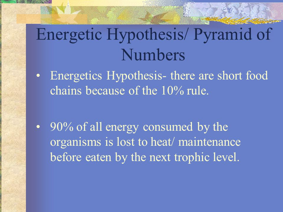 Food chains and the 10% Rule of Energy