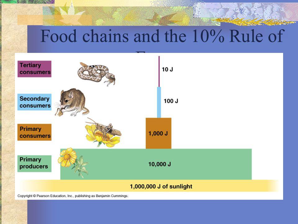 10% Rule Growth (new biomass) Cellular respiration Feces 100 J 33 J 67 J 200 J Plant material eaten by caterpillar