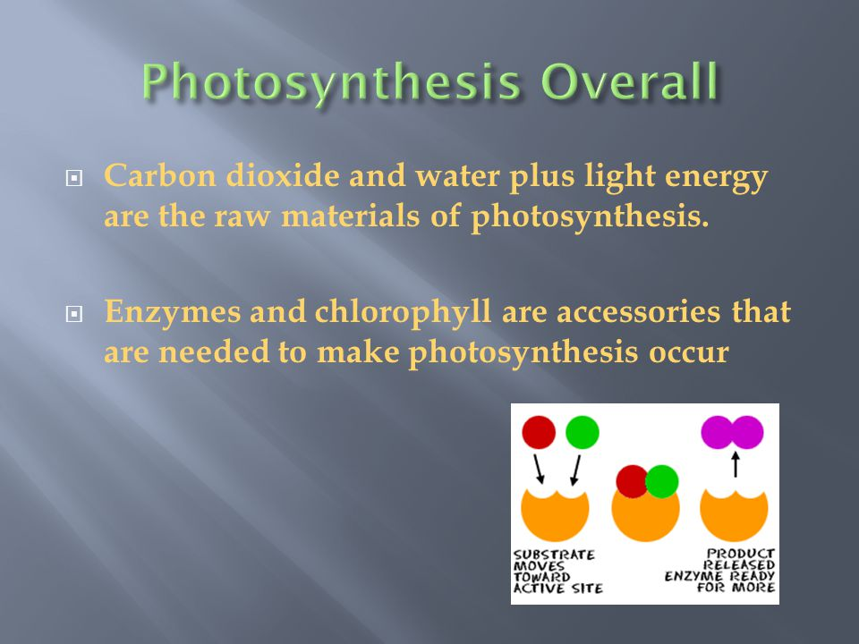  Visible and Invisible radiation from the Sun and other sources of radiant energy.