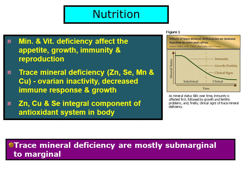 Half of soils in world are Zn deficient (Nielson,2004) Same is reflected in feeds & fodder & hence animals Zn is very critical mineral Need to optimize requirements of Zn for proper growth, immune response and reproduction Concentration of Zn in livestock feeds & fodders is critically deficient in AP (Nagalakshmi et al., 2007 & 2009) and most parts of the country (Gowda et al., 2009)
