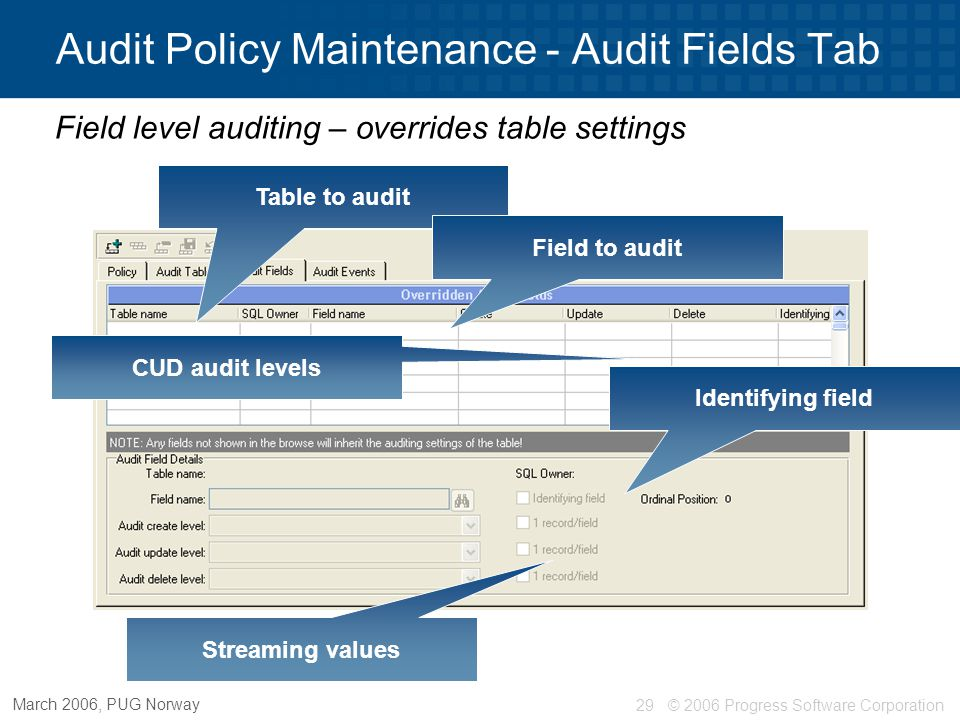 © 2006 Progress Software Corporation30 March 2006, PUG Norway Audit Policy Maintenance - Audit Events Event level auditing Event ID Event name Event Level Criteria – futures