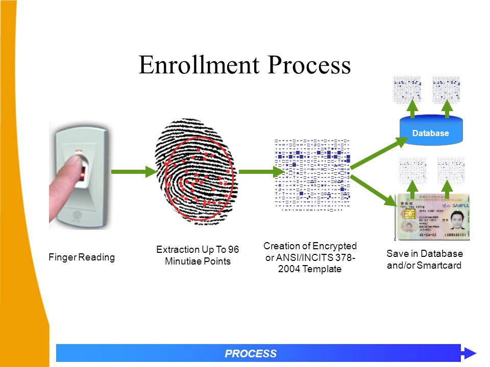 Enrollment Process                   Creation of Encrypted or ANSI/INCITS 378- 2004 Template Extraction Up To 96 Minutiae Points Finger Reading PROCESS Database Save in Database and/or Smartcard