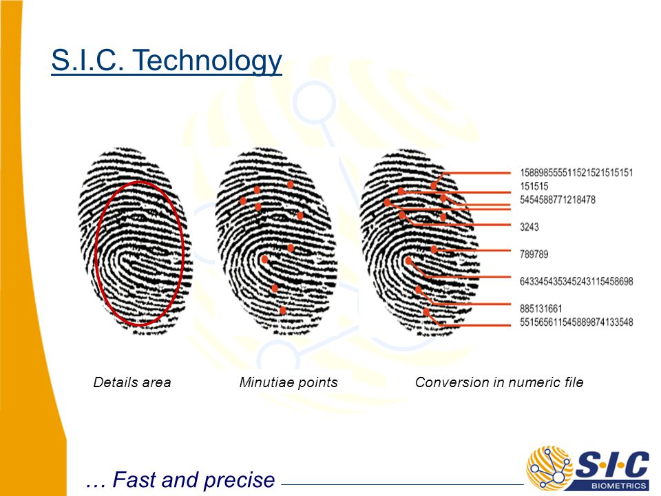 Details area Minutiae points Conversion in numeric file … Fast and precise S.I.C. Technology