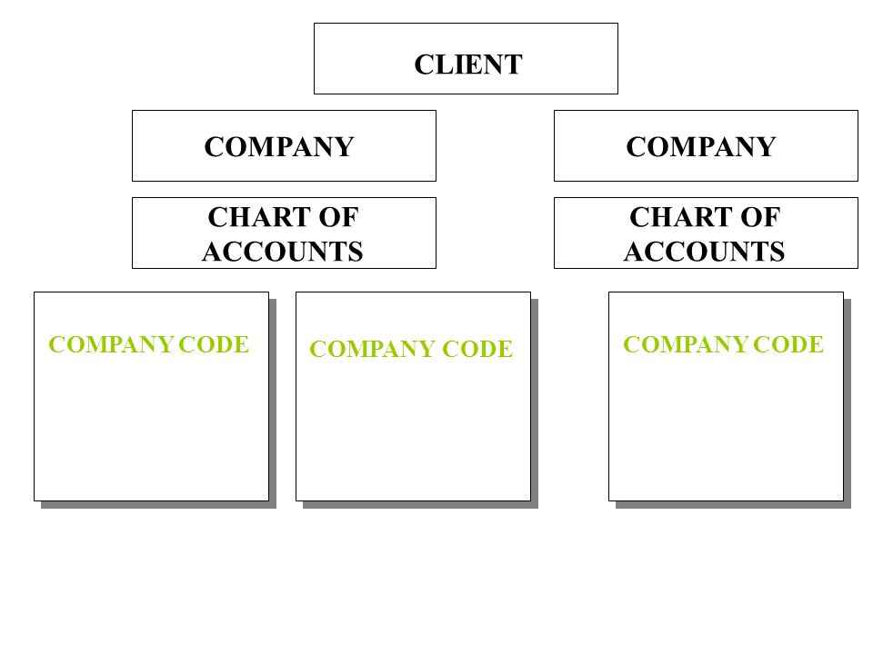 Company Code A required structure A legally independent entity The smallest organizational unit for which accounting can be carried out The level where business transactions are processed The level where accounts are managed The level where legal individual financial statements, such as the balance sheet and the profit and loss statement, are created A BALANCED SET OF BOOKS