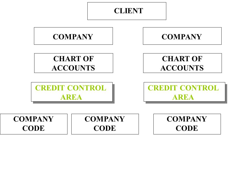 Credit Control Area An organizational unit or area of responsibility created to control customer credit limits A company code is assigned to one and only one credit control area Multiple company codes can be assigned to one credit control area