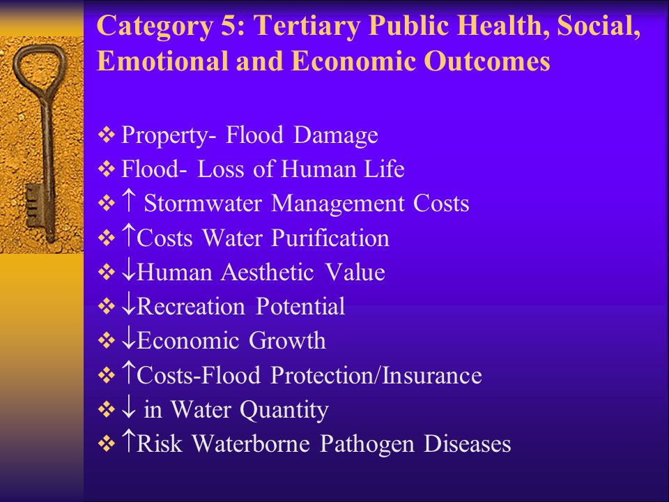 Category 5: Tertiary Public Health, Social, Emotional and Economic Outcomes Continued  Loss of Aquatic/Terrestrial Species   Risk Cancer/Humans   Risk Other Environmental Disease