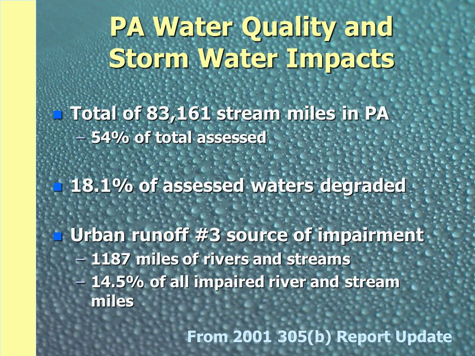 Now We Know About Storm Water and Its Impacts on Our Community... But What Are We Doing About It?