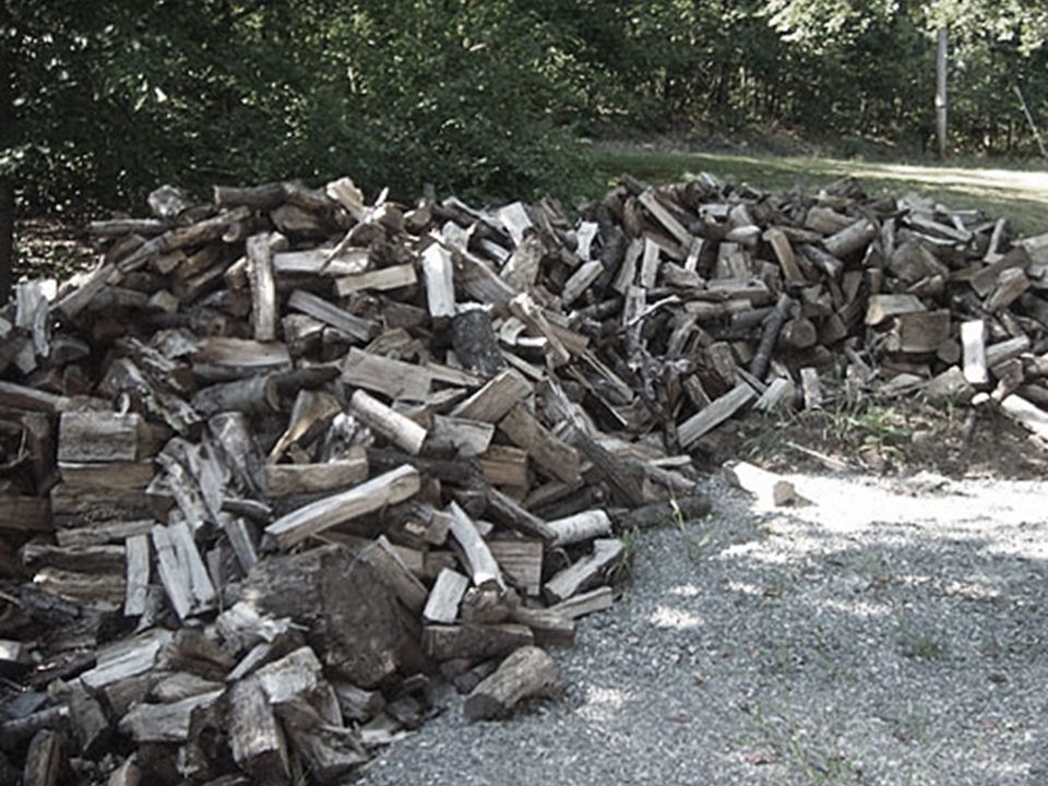 We spent our days cutting and stacking fire wood.