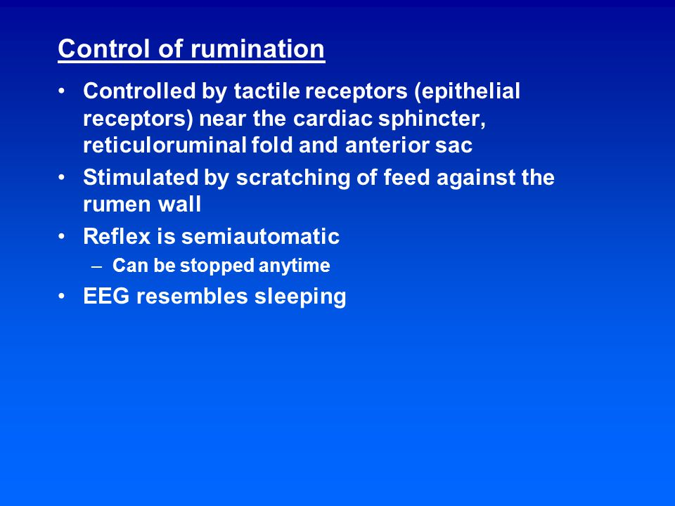 Rumination time Average times for a grazing animal –Eating – 8 hours –Ruminating – 8 hours –Resting – 8 hours Ruminating time is quite variable Factors affecting rumination time –Fiber content of diet –Physical form of diet