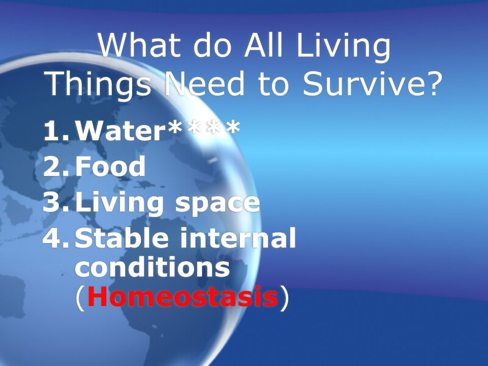 What do All Living Things Need to Survive.