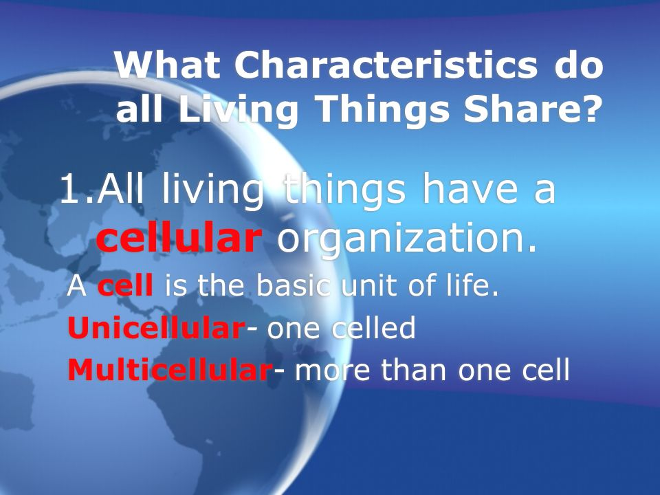 What Characteristics do all Living Things Share.1.All living things have a cellular organization.