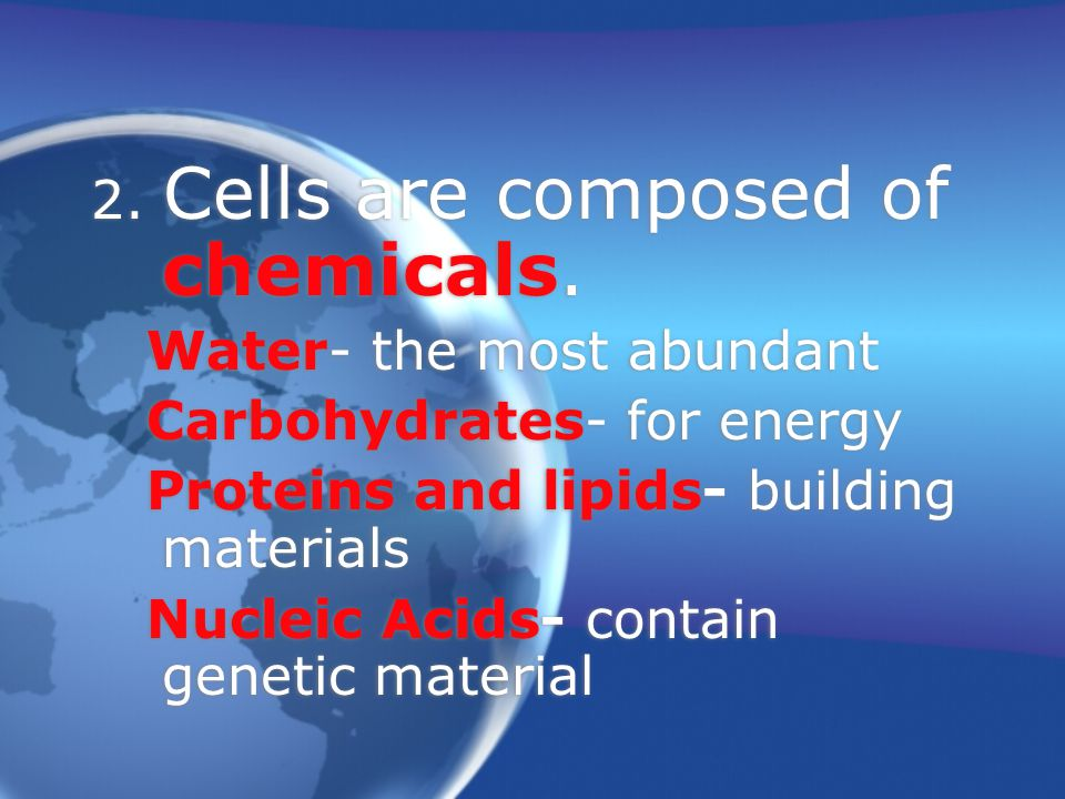 2.Cells are composed of chemicals.