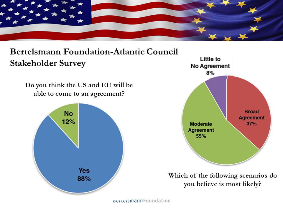 Who We Are TTIP Stakeholder Survey: Potential Sticking Points