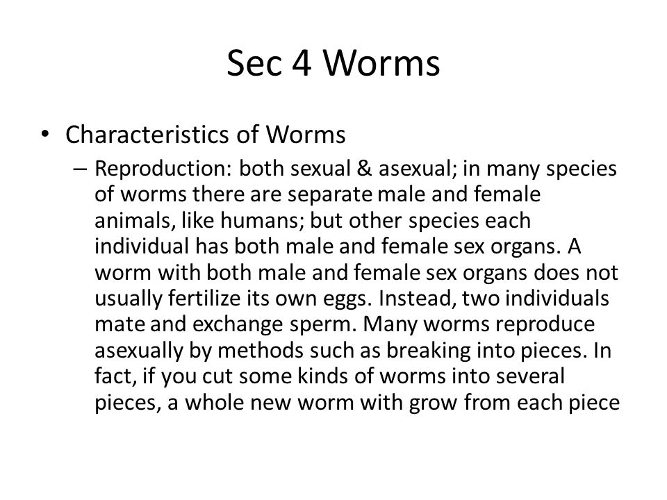 Sec 4 Worms Flatworms – Are flat and soft as jelly – Parasite is an organism that lives inside or on another organism – Host is the organism in or on which it lives; parasites may rob their hosts of food and make them weak; they may injure the hosts tissues or organs, but they rarely kill their host (example: flukes & tapeworms) – Free-living organism does not live in or on other organisms; they may glide over rocks in ponds, slide over damp soil, or swim slowly through the ocean like ruffled brightly patterned leaves