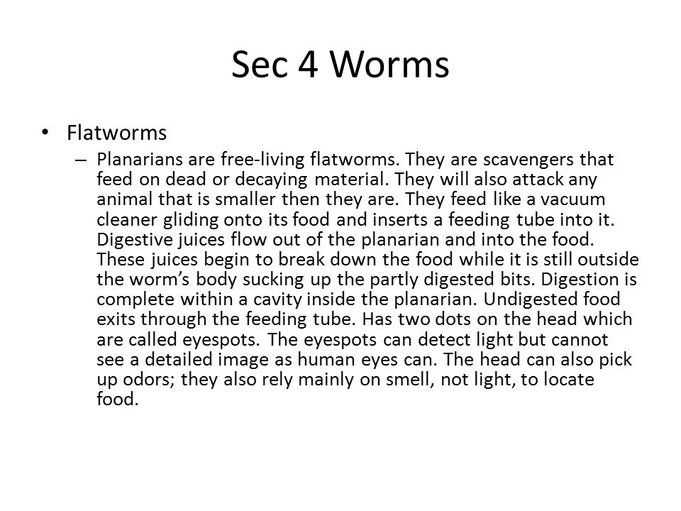 Sec 4 Worms Flatworms – Tapeworms are one kind of parasite flatworm.