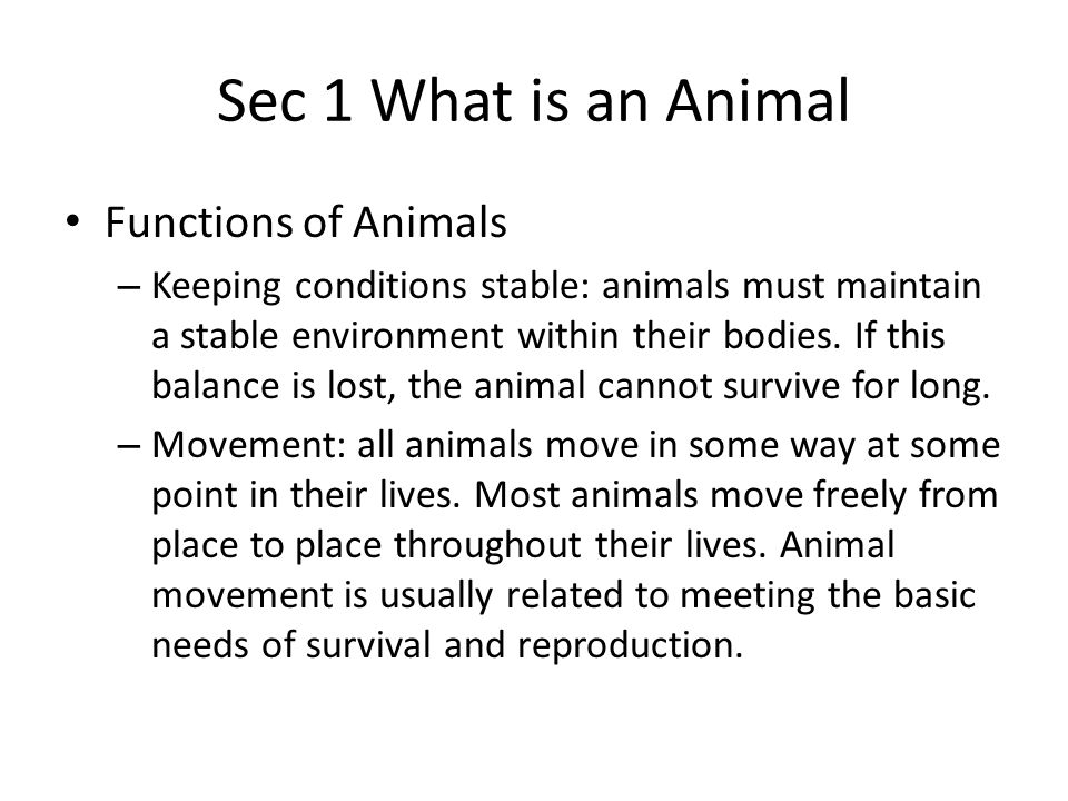 Sec 1 What is an Animal Functions of Animals – Reproduction: sexual reproduction is the process by which a new organism develops from the joining of two sex cells (male sperm, female egg).