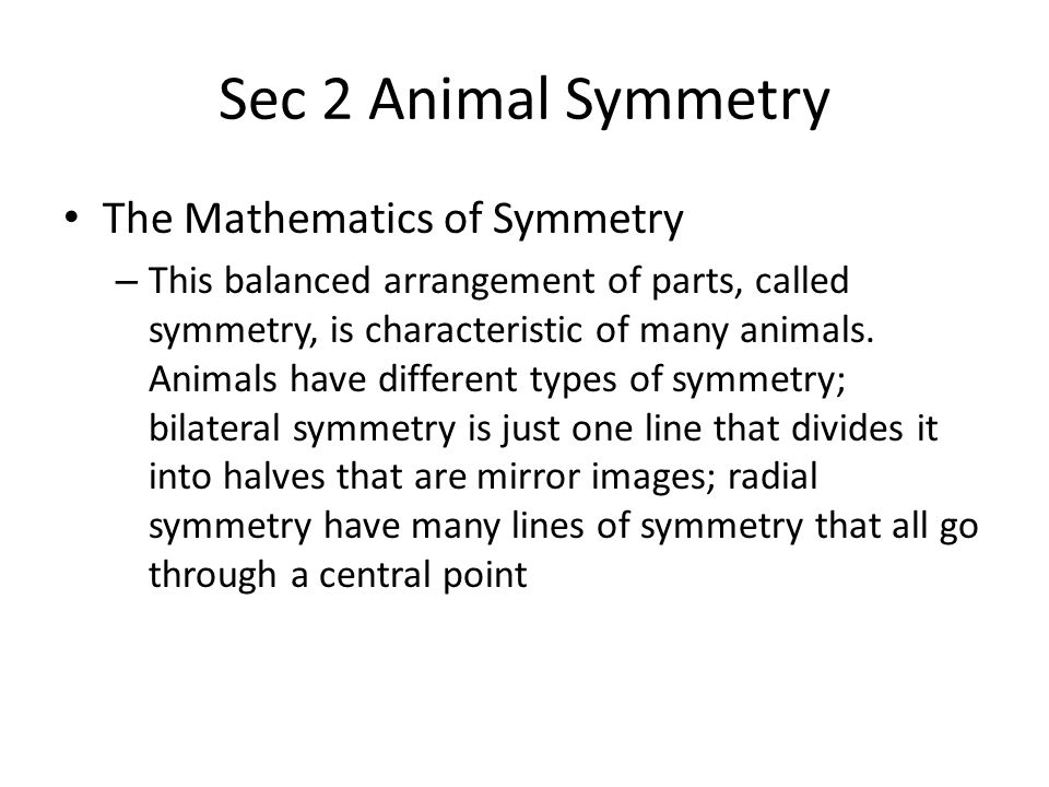 Sec 2 Animal Symmetry Symmetry and Daily Life – Depending on their symmetry, animals share some general characteristics – Animals with radial symmetry The external body parts of animals with radial symmetry are equally spaced around a central point.
