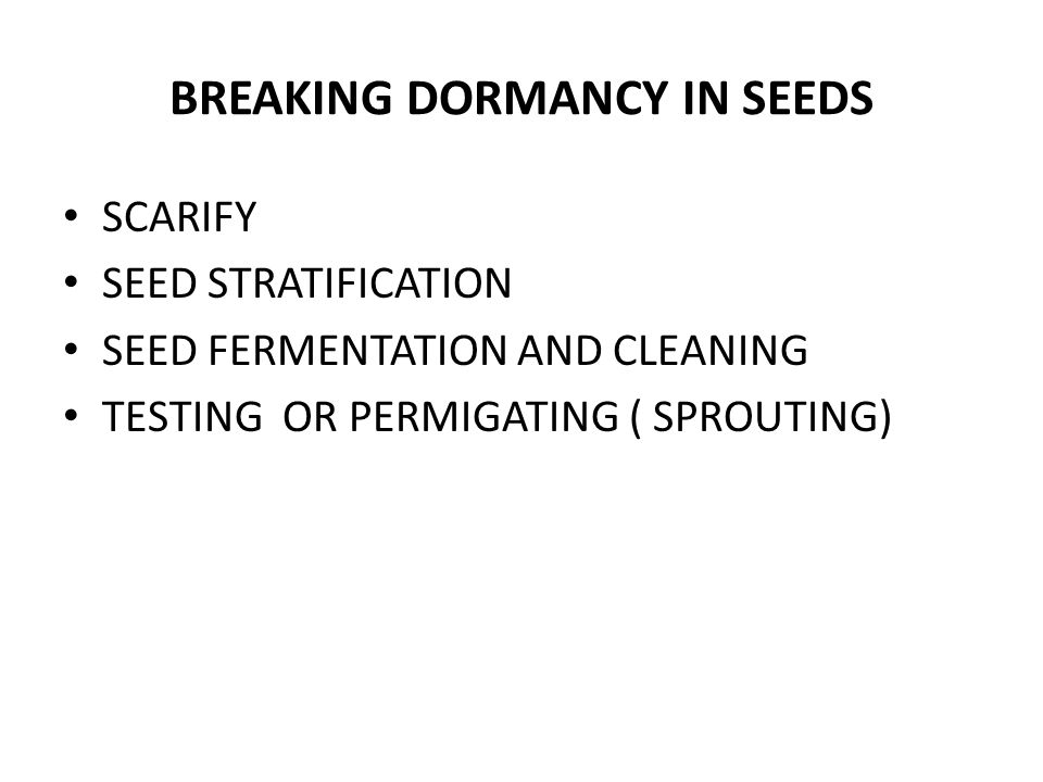 SCARIFICATION Breaking, Scratching or Softening