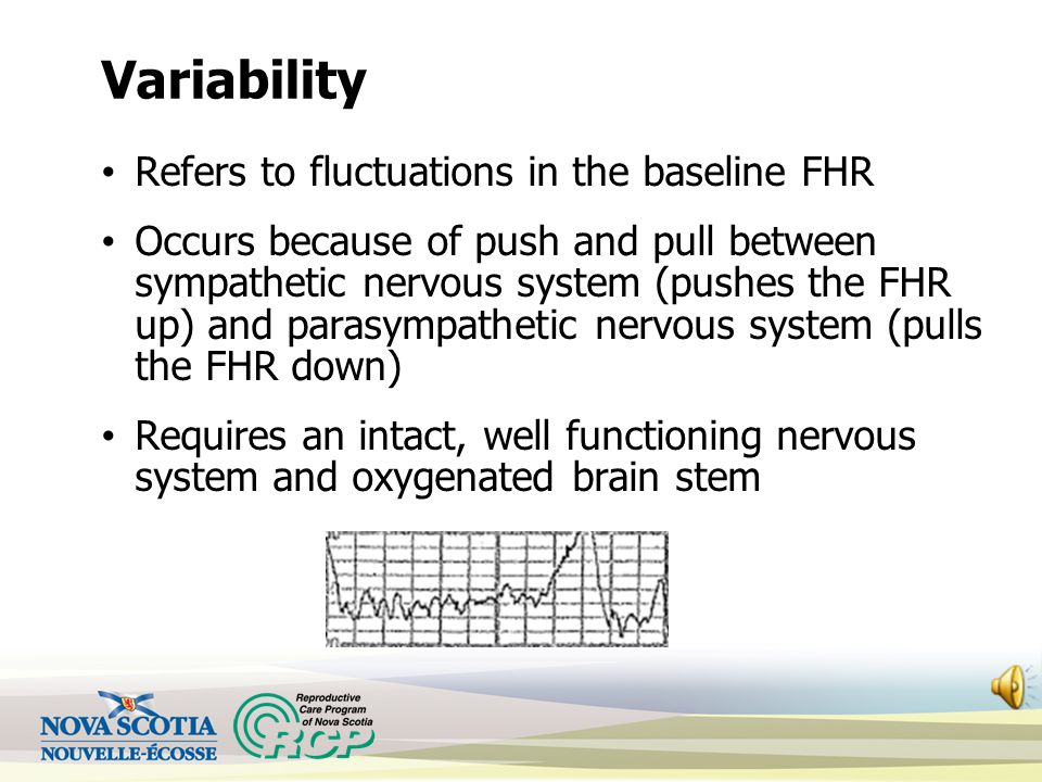 Variability Refers to fluctuations in the baseline FHR Occurs because of push and pull between sympathetic nervous system (pushes the FHR up) and parasympathetic nervous system (pulls the FHR down) Requires an intact, well functioning nervous system and oxygenated brain stem