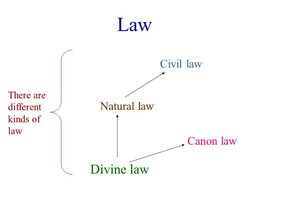 Law Divine law Natural law Civil law Canon law Civil law is founded upon natural law Natural law is a participation in divine law, but is naturally known Church law is rooted in an understanding of divine law and the historical situation of the Church.