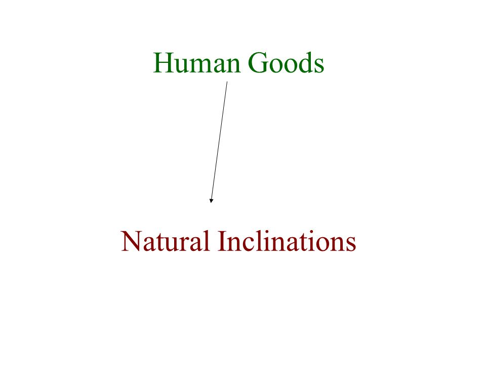 Human Life – a natural inclination to preserve it and/or beget it. We see it as good.