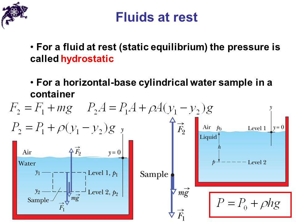 Fluids at rest The hydrostatic pressure at a point in a fluid depends on the depth of that point but not on any horizontal dimension of the fluid or its container Difference between an absolute pressure and an atmospheric pressure is called the gauge pressure