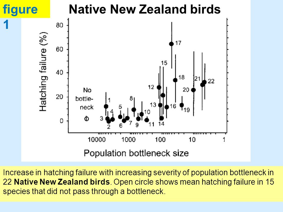 Increase in hatching failure with increasing severity of population bottleneck in 22 Native New Zealand birds.
