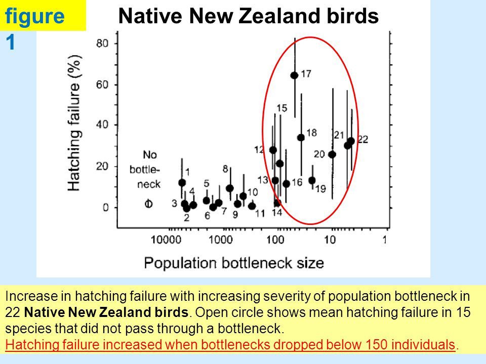 Increase in hatching failure of 15 introduced species with decreased numbers of individuals released by the 19 th century New Zealand acclimatization societies.